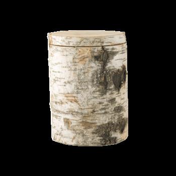 Urne Aus Holz Baumurne, Moorbirke